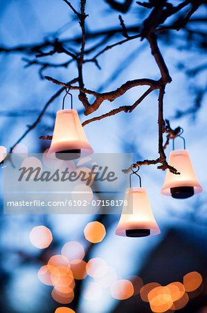 Illuminated lanterns hanging on branches Stock Photo - Premium Royalty-Free, Image code: 6102-07158178