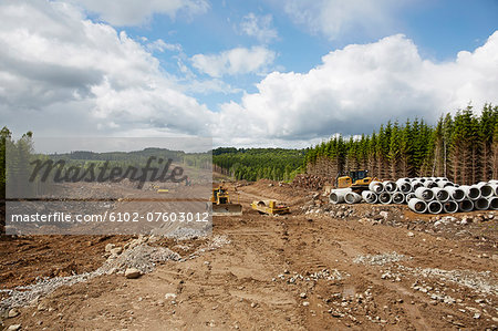 Forest cut, Vastergotland, Sweden Stock Photo - Premium Royalty-Free, Image code: 6102-07603012