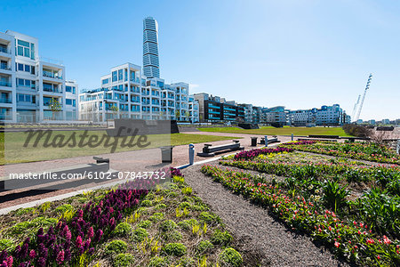 Buildings with skyscraper on background Stock Photo - Premium Royalty-Free, Image code: 6102-07843732
