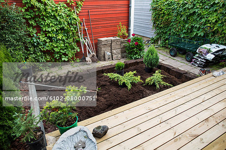 View of small garden Stock Photo - Premium Royalty-Free, Image code: 6102-08000751