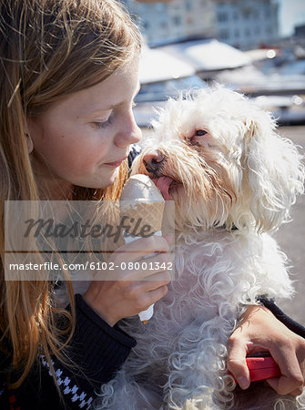 Girl and dog eating ice-cream together Stock Photo - Premium Royalty-Free, Image code: 6102-08001342