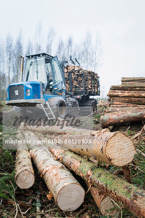 Logging vehicle with timber on foreground Stock Photo - Premium Royalty-Free, Image code: 6102-08120935