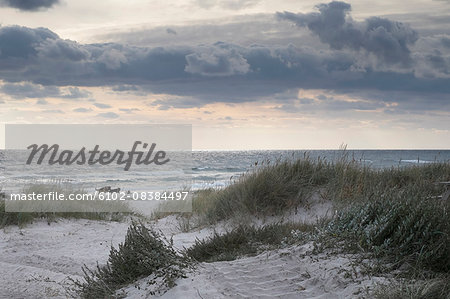 Sandy beach at dusk Stock Photo - Premium Royalty-Free, Image code: 6102-08384497