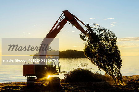 Digger at sunset Stock Photo - Premium Royalty-Free, Image code: 6102-08566709