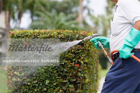 Pest control technician using high pressure spray gun and hose with heavy duty gloves Stock Photo - Premium Royalty-Free, Image code: 6105-06702855