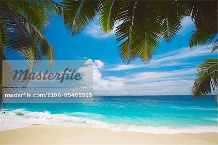 Tropical beach, Seychelles, Indian Ocean, Africa Stock Photo - Premium Royalty-Free, Image code: 6106-05405565
