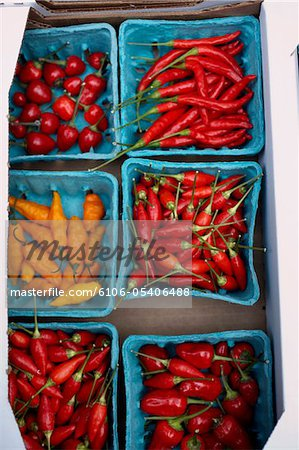 Varitey of hot peppers Stock Photo - Premium Royalty-Free, Image code: 6106-05406488
