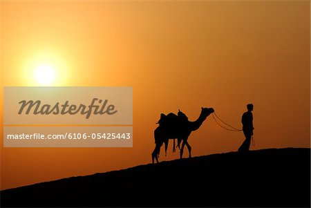 Man and his camel, India Stock Photo - Premium Royalty-Free, Image code: 6106-05425443