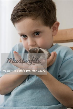 Little boy playing with his hamster Stock Photo - Premium Royalty-Free, Image code: 6106-05492171