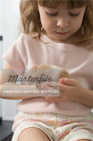 Little girl playing with her hamster Stock Photo - Premium Royalty-Free, Image code: 6106-05492183