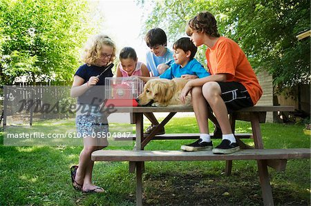 Group of children (7-13) with dog sitting on picnic table, looking at hamster in cage Stock Photo - Premium Royalty-Free, Image code: 6106-05504847