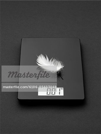 A feather on electronic scale Stock Photo - Premium Royalty-Free, Image code: 6106-05603069