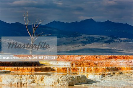 Minerva Terrace, Mammoth Hot Springs Stock Photo - Premium Royalty-Free, Image code: 6106-05952411