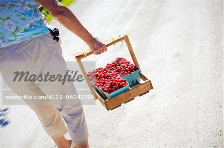 Family picking berrys in the summr sun canada Stock Photo - Premium Royalty-Free, Image code: 6106-06042780