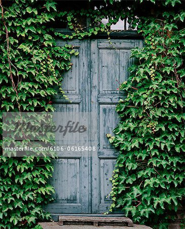 Blue door Stock Photo - Premium Royalty-Free, Image code: 6106-06165408