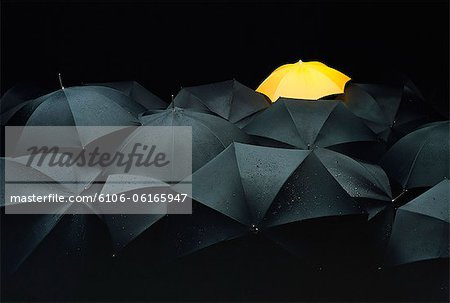 One yellow umbrella among many black umbrellas. Stock Photo - Premium Royalty-Free, Image code: 6106-06165947