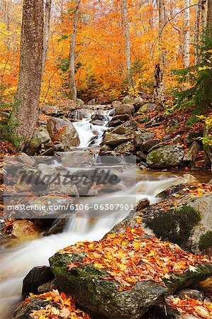 Green Mountains, Vermont Stock Photo - Premium Royalty-Free, Image code: 6106-06307901