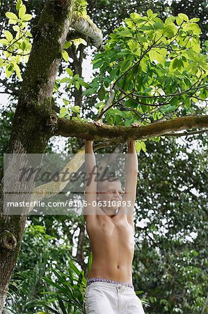 young boy in tree Stock Photo - Premium Royalty-Free, Image code: 6106-06310893