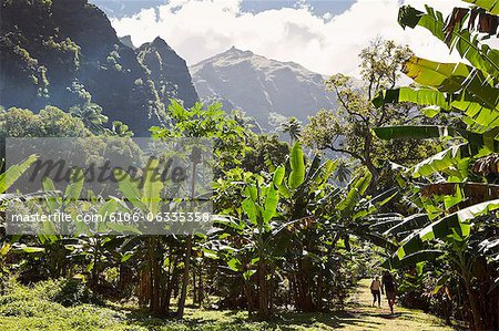 hakani valley in nuku hiva island Stock Photo - Premium Royalty-Free, Image code: 6106-06335358