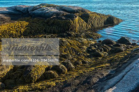 Low tide along Maine's Down East coast Stock Photo - Premium Royalty-Free, Image code: 6106-06434670