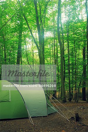 Woodland camping Stock Photo - Premium Royalty-Free, Image code: 6106-06496208