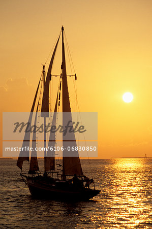Sailboat sailing in golden sunset light, Miami, FL Stock Photo - Premium Royalty-Free, Image code: 6106-06830850