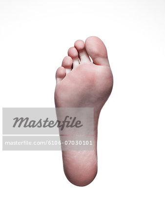 Bare foot on white background Stock Photo - Premium Royalty-Free, Image code: 6106-07030101