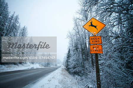 Deer crossing sign along snowy road. Stock Photo - Premium Royalty-Free, Image code: 6106-07454767