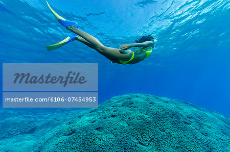 Female snorkeler and coral reef. Stock Photo - Premium Royalty-Free, Image code: 6106-07454953