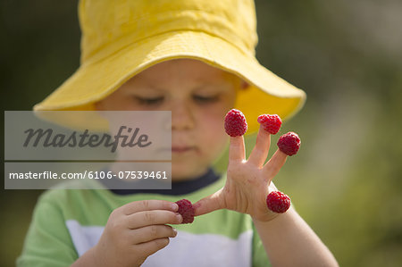 Male toddler with raspberries on his fingers Stock Photo - Premium Royalty-Free, Image code: 6106-07539461