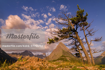 Glacier NP Grinnell Point Stock Photo - Premium Royalty-Free, Image code: 6106-07761751