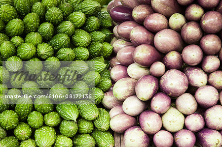 Veggies Galore Stock Photo - Premium Royalty-Free, Image code: 6106-08172136