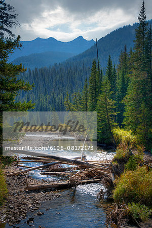 Lamar River, Yellowstone National Park Stock Photo - Premium Royalty-Free, Image code: 6106-08172173