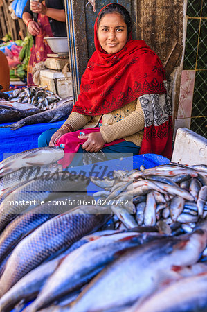 Nepali woman selling fishes on local market Stock Photo - Premium Royalty-Free, Image code: 6106-08277782