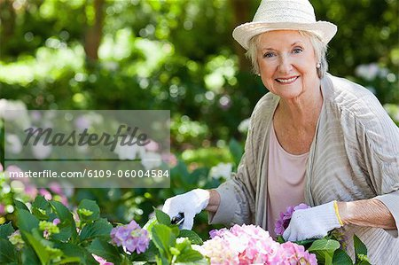 Woman smiling and looking ahead while pruning pink flowers in a garden Stock Photo - Premium Royalty-Free, Image code: 6109-06004584