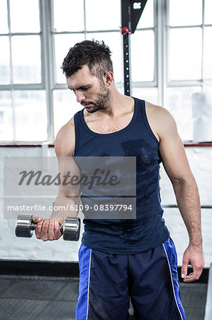 Fit man lifting heavy black dumbbells Stock Photo - Premium Royalty-Free, Image code: 6109-08397794