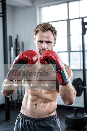 Fit man with boxing gloves Stock Photo - Premium Royalty-Free, Image code: 6109-08397863
