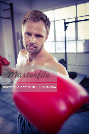 Fit man with boxing gloves Stock Photo - Premium Royalty-Free, Image code: 6109-08397866