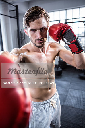 Fit shirtless man with boxing gloves Stock Photo - Premium Royalty-Free, Image code: 6109-08398049