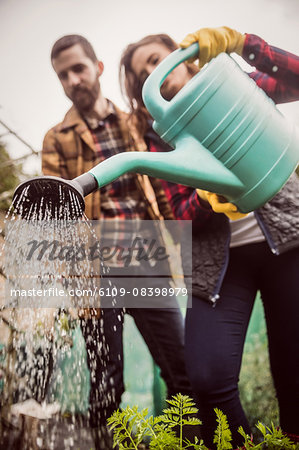 Couple watering plants together Stock Photo - Premium Royalty-Free, Image code: 6109-08398979