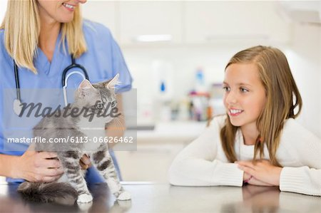 Veterinarian examining cat in vet's surgery Stock Photo - Premium Royalty-Free, Image code: 6113-06626462