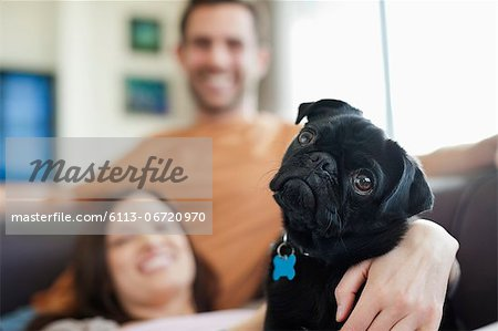 Couple relaxing with dog on sofa Stock Photo - Premium Royalty-Free, Image code: 6113-06720970