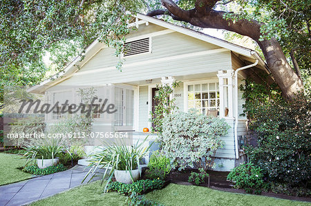Plants and trees around house Stock Photo - Premium Royalty-Free, Image code: 6113-07565654