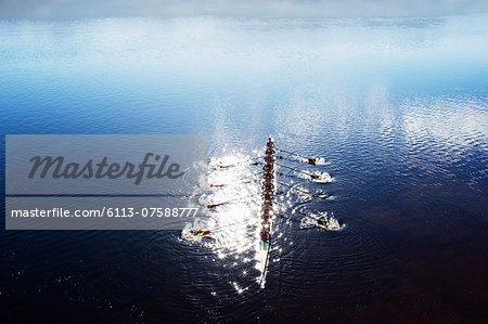 Rowing team rowing scull on lake Stock Photo - Premium Royalty-Free, Image code: 6113-07588777
