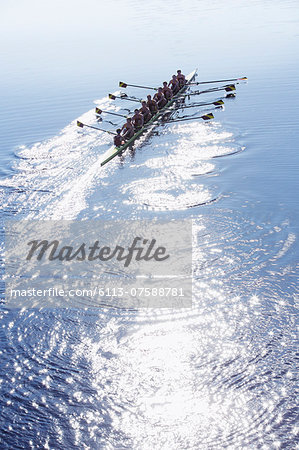 Rowing team rowing scull on sunny lake Stock Photo - Premium Royalty-Free, Image code: 6113-07588781