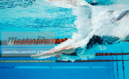 Swimmer diving into pool Stock Photo - Premium Royalty-Free, Image code: 6113-07588806