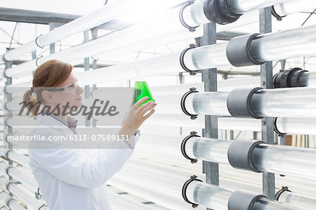 Scientist with beaker in greenhouse Stock Photo - Premium Royalty-Free, Image code: 6113-07589131