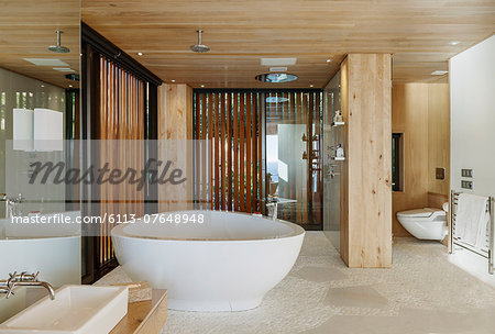 Modern bathroom with soaking tub Stock Photo - Premium Royalty-Free, Image code: 6113-07648948