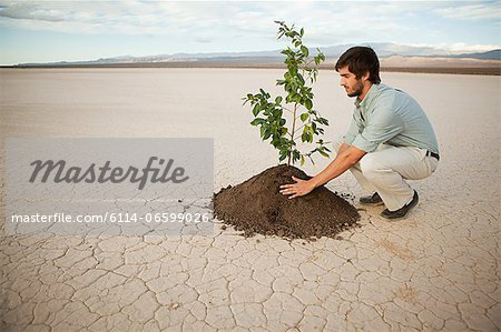 Man planting plant in desert landscape Stock Photo - Premium Royalty-Free, Image code: 6114-06599026