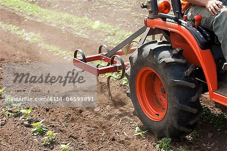 Person on tractor in field Stock Photo - Premium Royalty-Free, Image code: 6114-06599891